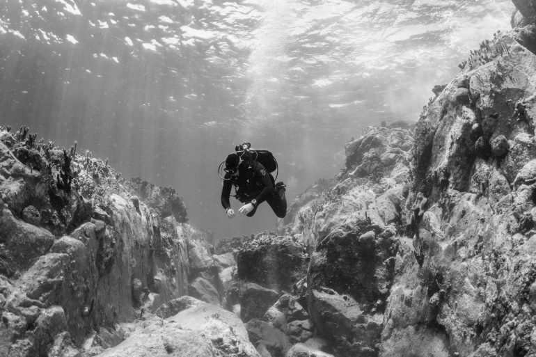 H10: Livestream: The Why Of Dive Watches